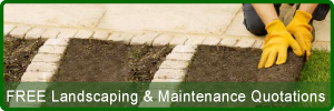 Free Landscaping and Maintenance Quotations in Paphos Cyprus