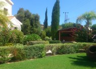 Cyprus  Landscaping -  Pafos & Limassol area