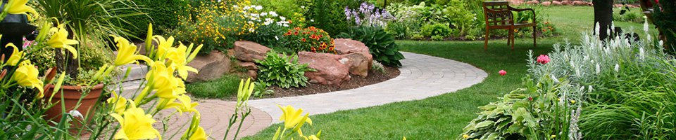 Begonia Garden Center - Landscaping and Maintenance in Paphos ...