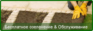 Free Landscaping and Maintenance Quotations in Cyprus